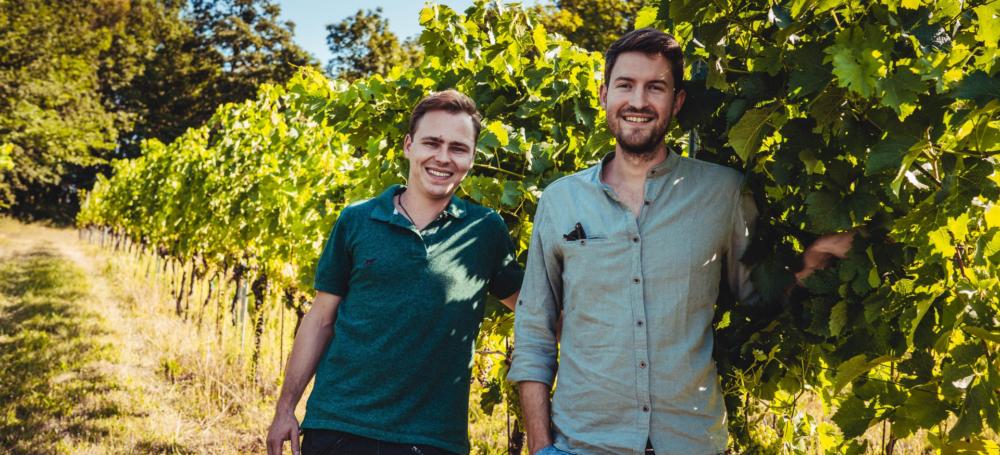 Wie sieht's aus mit Weinbau in Österreich?