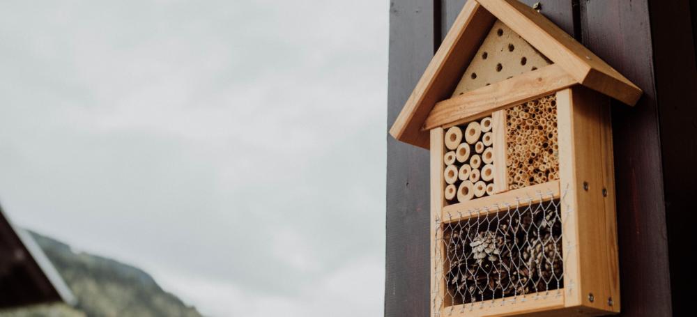 5 Gadgets, die dein Zuhause nachhaltiger gestalten